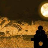 【2019】中秋の名月のお月見はいつ?満月とは限らない!
