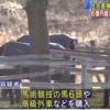 田村純子の顔画像や手口は?Facebookを特定?着服し馬や高級車を購入